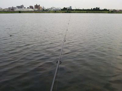 DSC 0027 400x300 釣行記2017 P.4 多摩川 稲田堤 神奈川(京王相模原線エリア) ニュータックルでバス釣り