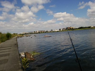 DSC 0356 400x300 釣行記2017 P.2 多摩川(稲田堤)にてシマノ コンプレックスのインプレ&キャスティングの練習