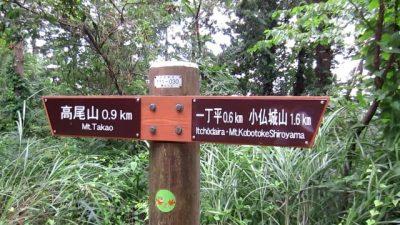 0823 10 400x225 小仏峠から高尾山ルート そしてビアガーデン 真夏の初級者登山レポート