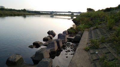 DSC 0203 400x225 釣行記2017 P.15  多摩川 稲城北緑地公園 バス釣り
