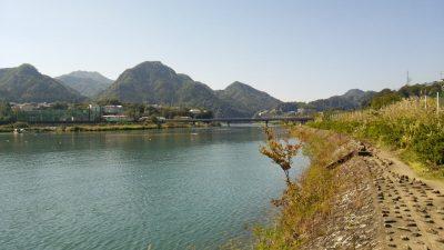 DSC 0186 400x225 釣行記2017 P.17 島田湖 桂川 (山梨県上野原市)おかっぱり バス釣り