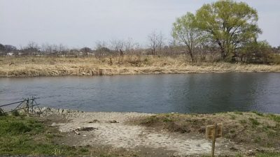 DSC 0001 400x225 羽村取水堰(多摩川)の上流でバス釣りしてみた|釣行記 2018 3月 P.11