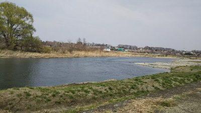 DSC 0003 400x225 羽村取水堰(多摩川)の上流でバス釣りしてみた|釣行記 2018 3月 P.11