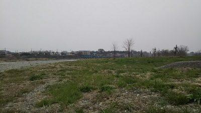 DSC 0004 400x225 羽村取水堰(多摩川)の上流でバス釣りしてみた|釣行記 2018 3月 P.11