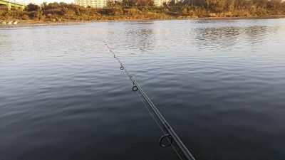 DSC 0004 400x225 朝まずめの多摩川でバス釣り。小バス1匹ヒット|釣行記 2018 10月 P.45