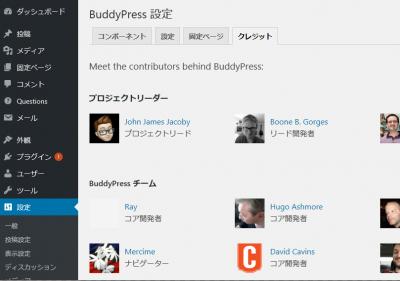 0211 06 400x281 BuddyPress【WordPress プラグイン】バージョン 4.1.0 アップデートレビュー