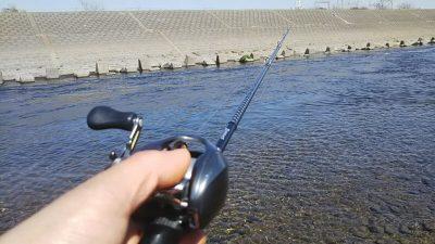 DSC 0124 400x225 ダウンショット+グリパンでヒット【多摩川 バス釣り】|釣行記2019 3月 P.09