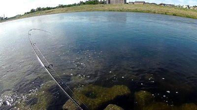 2019 0617 01 400x225 【多摩川 バス釣り】バラシた獲物はデカかった|釣行記2019 6月 P.22