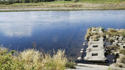 DSC 0017 400x225 【多摩川 バス釣り】100回目の釣行はデコった。残念|釣行記2019 6月 P.23