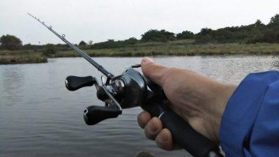 DSC 0029 400x225 多摩川 バス釣り デコ4連チャン ショートバイトすらない|釣行記2019 6月 P.20