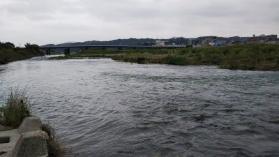 DSC 0005 400x225 【多摩川 バス釣り】梅雨の副産物を探しにランガン|釣行記2019 7月 P.25