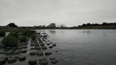 DSC 0013 400x225 【多摩川 バス釣り】梅雨の副産物を探しにランガン|釣行記2019 7月 P.25