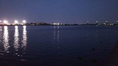 DSC 0032 400x225 【多摩川 バス釣り】久し振りにカシータスでヘビダンやってみた|釣行記2019 7月 P.27