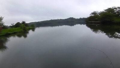2019 0821 06 400x225 田貫湖キャンプ場 夏キャンプ2019 バス釣り(初ラージ果たす)