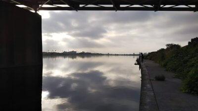 DSC 0038 400x225 【多摩川 バス釣り】朝まずめにタモが折れた こんな日は釣れる気しない
