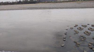 DSC 0053 400x225 【多摩川 バス釣り】台風19号(ハギビス)後は激濁り HPバグの実釣|釣行記2019 10月 P.35