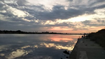 DSC 0072 400x225 【多摩川 バス釣り】沈み蟲(シズミムシ)はノーシンカーが好感触|釣行記2019 10月 P.33