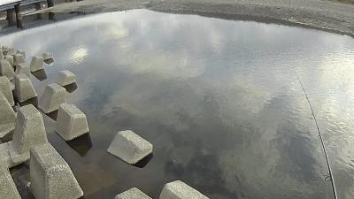 1119 05 400x225 【多摩川 バス釣り】台風後に多摩川が消滅した!?2019(秋)ここのポイントは完全に終わった。  釣行記2019 11月 P.38