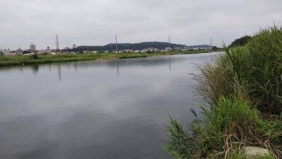 DSC 0003 1 400x225 【多摩川 バス釣り】台風後に多摩川が消滅した!?2019(秋)ここのポイントは完全に終わった。  釣行記2019 11月 P.38