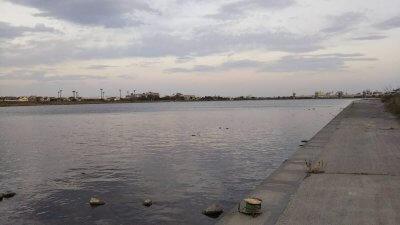 DSC 0014 400x225 【多摩川 バス釣り】いつものポイントは台風後に激変の2019(秋)|釣行記2019 11月 P.37