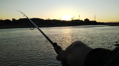DSC 0089 400x225 【多摩川 バス釣り】クリアウォーターのやや減水 2バイト 釣行記2019 11月 P.36
