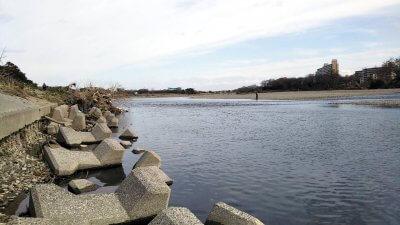 DSC 0091 400x225 【バス釣り 多摩川】初めてのポイントだけど強風でバックラばかり|釣行記2020 3月 P.04