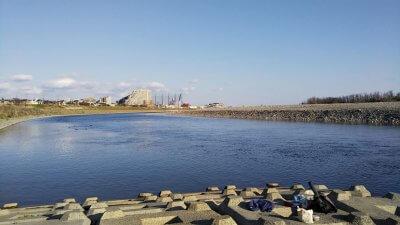 DSC 0095 400x225 【バス釣り 多摩川】初めてのポイントだけど強風でバックラばかり|釣行記2020 3月 P.04