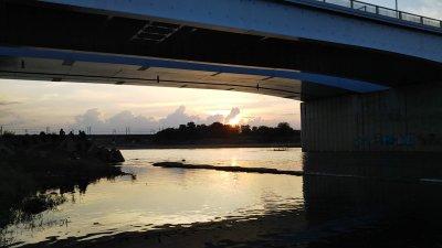 DSC 0158 400x225 【多摩川 バス釣り】夕まずめ 最後の1投でデカいのが出ました|釣行記2020 6月 P.11