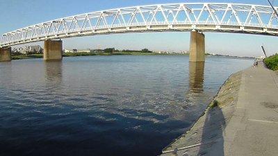 20 01 400x225 【多摩川 バス釣り】夕まずめにチャンスタイムはなかった|釣行記2020 8月 P.15