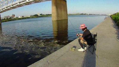 20 02 400x225 【多摩川 バス釣り】夕まずめにチャンスタイムはなかった|釣行記2020 8月 P.15