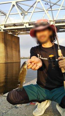 DSC 0143 1 225x400 【多摩川 バス釣り】小バスだったらミミズで数釣りできるんだけど|釣行記2020 8月 P.16