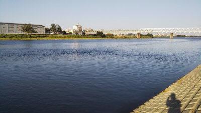 DSC 0146 400x225 【多摩川 バス釣り】夕まずめにチャンスタイムはなかった|釣行記2020 8月 P.15