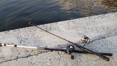 DSC 0147 1 400x225 【多摩川 バス釣り】小バスだったらミミズで数釣りできるんだけど|釣行記2020 8月 P.16
