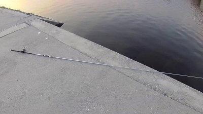 vlcsnap 2020 08 26 17h25m52s193 400x225 【多摩川 バス釣り】小バスだったらミミズで数釣りできるんだけど|釣行記2020 8月 P.16