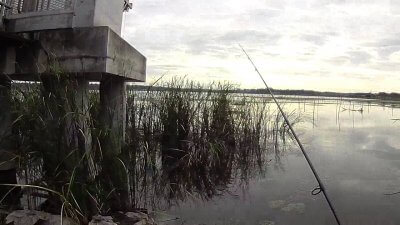 vlcsnap 2020 10 09 10h56m05s040 400x225 【印旛沼 バス釣り】初めてのフィールドで良型1本!(印旛沼西部調整池)|釣行記2020 10月 P.19
