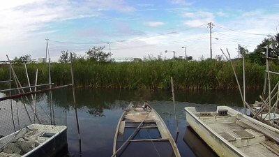 vlcsnap 2020 10 09 11h32m02s454 400x225 【印旛沼 バス釣り】初めてのフィールドで良型1本!(印旛沼西部調整池)|釣行記2020 10月 P.19