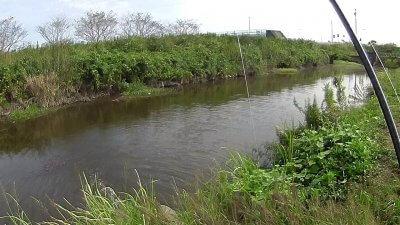 vlcsnap 2020 10 09 11h35m52s356 400x225 【印旛沼 バス釣り】初めてのフィールドで良型1本!(印旛沼西部調整池)|釣行記2020 10月 P.19