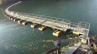 1117 03 400x225 【多摩川 バス釣り】奥多摩湖をスクーターでランガン|釣行記2020 11月 P.21