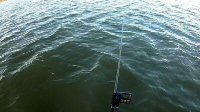 0216 05 400x225 【多摩川 バス釣り】ベイトリール飛距離計測中に、まさかの大物がヒット!|釣行記2021 2月 P.02
