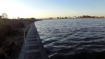 0216 06 400x225 【多摩川 バス釣り】ベイトリール飛距離計測中に、まさかの大物がヒット!|釣行記2021 2月 P.02
