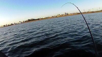 0216 07 400x225 【多摩川 バス釣り】ベイトリール飛距離計測中に、まさかの大物がヒット!|釣行記2021 2月 P.02