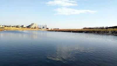 DSC 0169 400x225 【多摩川 バス釣り】2021年の初釣り ベイトフィネスを投げ倒す|釣行記2021 2月 P.01