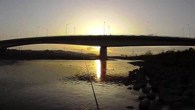 0316 02 1 400x225 【多摩川 バス釣り】ベイトフィネスでテキサスリグやったらまさかの大物|釣行記2021 3月 P.03