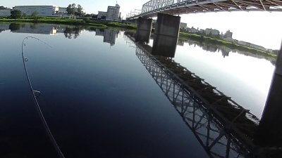 0719 03 400x225 【多摩川 バス釣り】ツインドリフトでシャッドテールとF サンスン|釣行記2021 7月 P.16