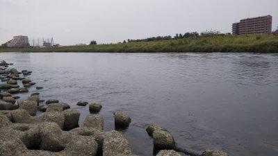 DSC 0467 400x225 【多摩川 バス釣り】カッパ着ての夕まずめ雨釣行は高活性だったが|釣行記2021 9月 P.21